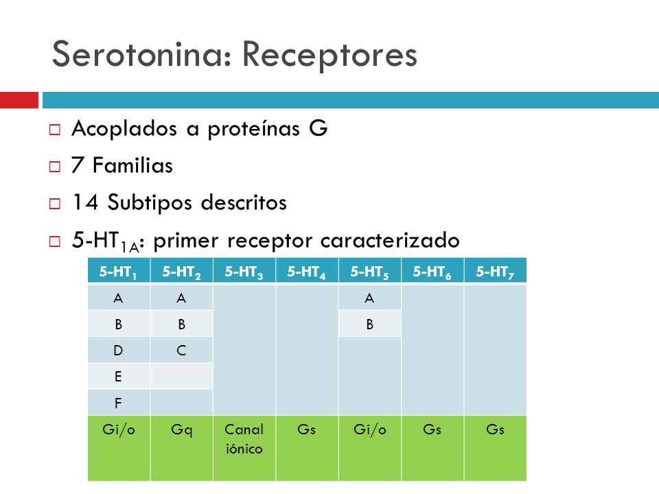 Serotonina: Receptores Acoplados a proteínas G 7 Familias 14 Subtipos descritos 5-HT 1A : primer receptor caracterizado 5-HT 1 5-HT 2 5-HT 3 5-HT 4 5-