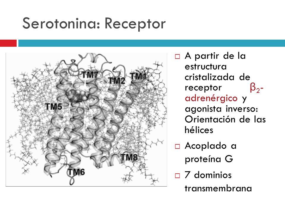 Serotonina: Receptor A partir de la estructura cristalizada de receptor β 2 - adrenérgico y agonista inverso: Orientación de las hélices Acoplado a pr