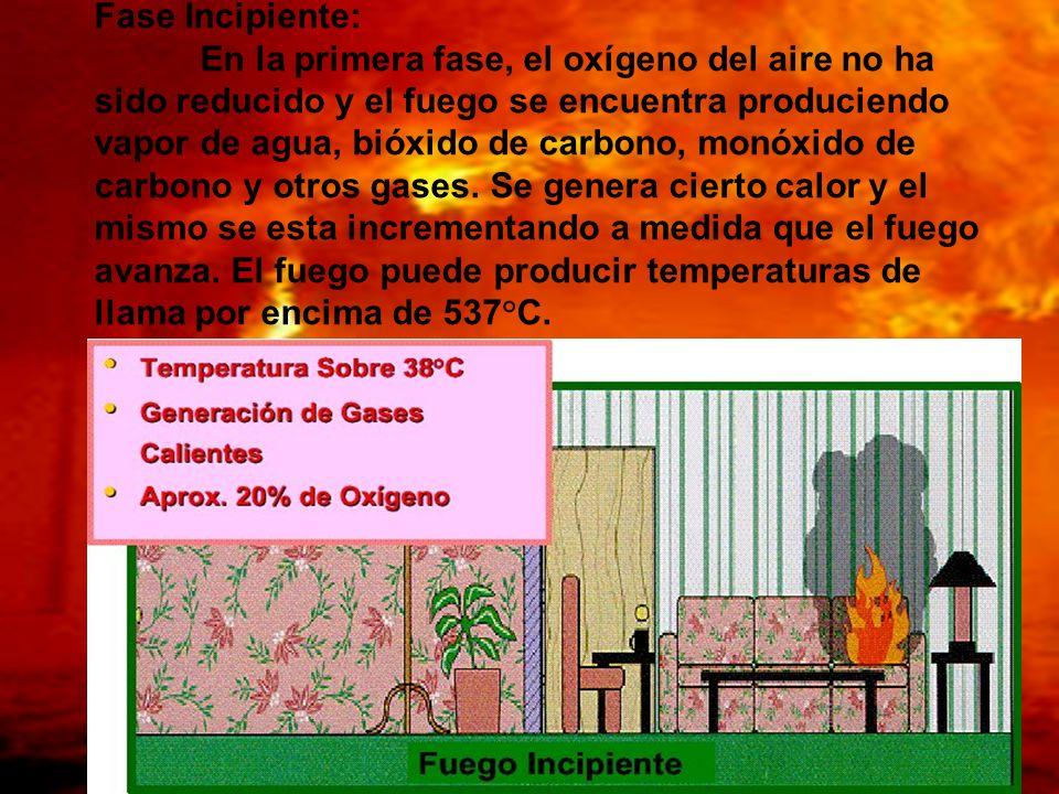 Fase Incipiente: En la primera fase, el oxígeno del aire no ha sido reducido y el fuego se encuentra produciendo vapor de agua, bióxido de carbono, mo