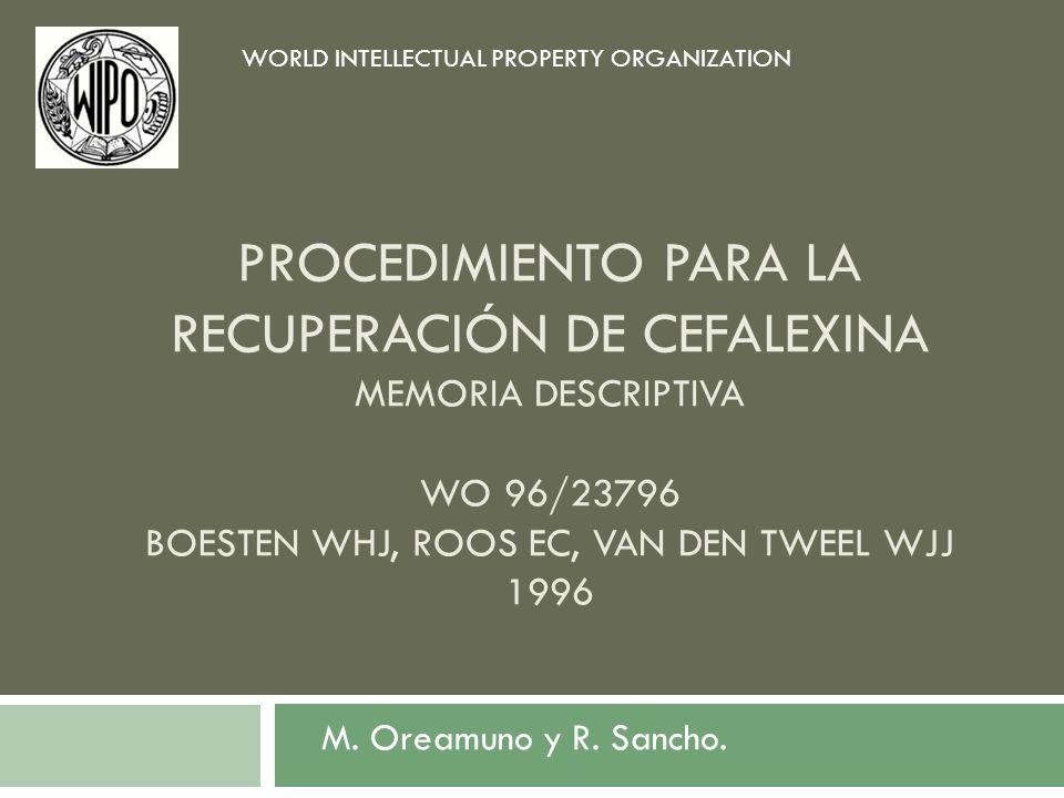 PROCEDIMIENTO PARA LA RECUPERACIÓN DE CEFALEXINA MEMORIA DESCRIPTIVA WO 96/23796 BOESTEN WHJ, ROOS EC, VAN DEN TWEEL WJJ 1996 M. Oreamuno y R. Sancho.