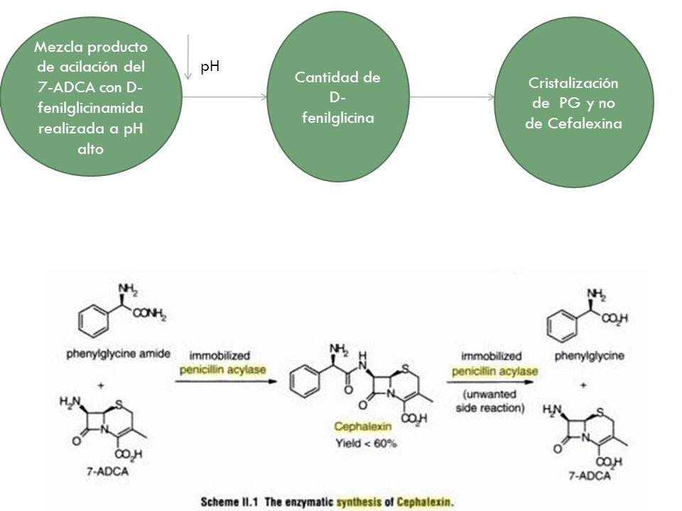 Mezcla producto de acilación del 7-ADCA con D- fenilglicinamida realizada a pH alto pH Cantidad de D- fenilglicina Cristalización de PG y no de Cefale
