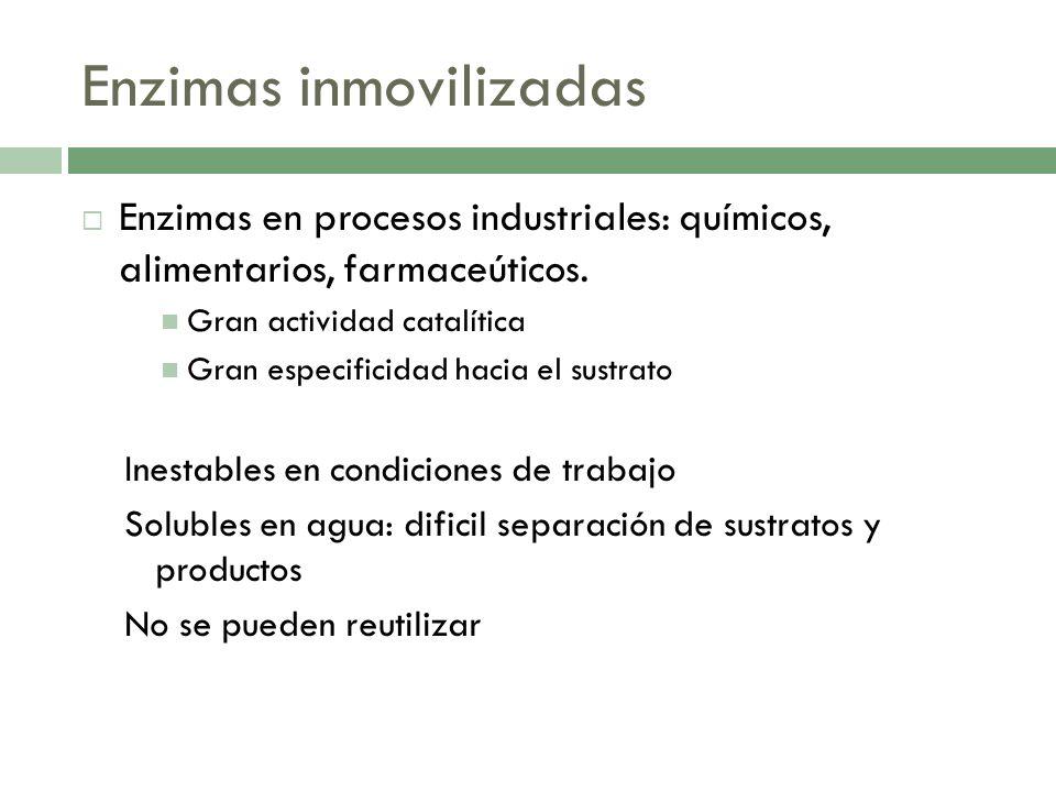 Enzimas inmovilizadas Enzimas en procesos industriales: químicos, alimentarios, farmaceúticos. Gran actividad catalítica Gran especificidad hacia el s
