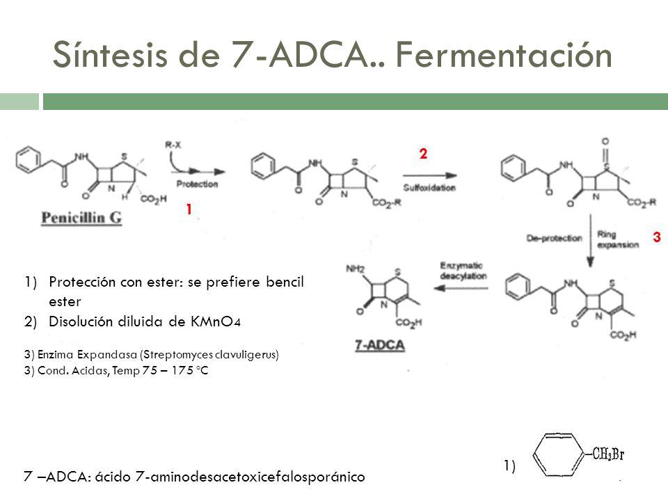 Síntesis de Cefalexina Si se usa PGA (fenilglicinamida) se libera: NH4+; y se se usa un ester de fenilglicina se libera: PGE: R-OH Ver diap #26