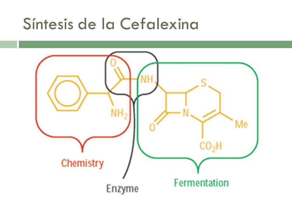 Problemas Preparación de Cefalexina con 7-ADCA Se aisla con derivado de D-difenilglicina (PGA o PGE) La reacción de acilación nunca se completa Recuperación y tratamiento de mezcla son difíciles: Recuperada en forma cristalina de una solución acuosa: oclusión de compuestos e impurezas originadas por la mezcla de reacción, productos indeseables, reactivos iniciales