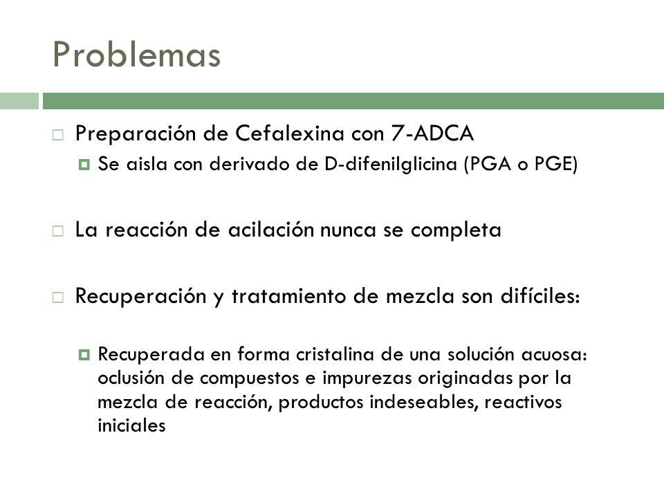 Problemas Purificación del producto final: propiedades ácido base y solubilidades de Cefalexina y 7ADCA y fenilglicina son muy parecidas.