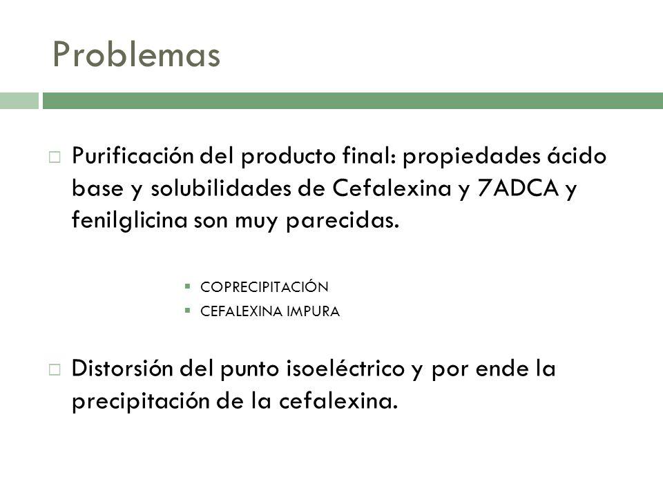 Problemas Purificación del producto final: propiedades ácido base y solubilidades de Cefalexina y 7ADCA y fenilglicina son muy parecidas. COPRECIPITAC