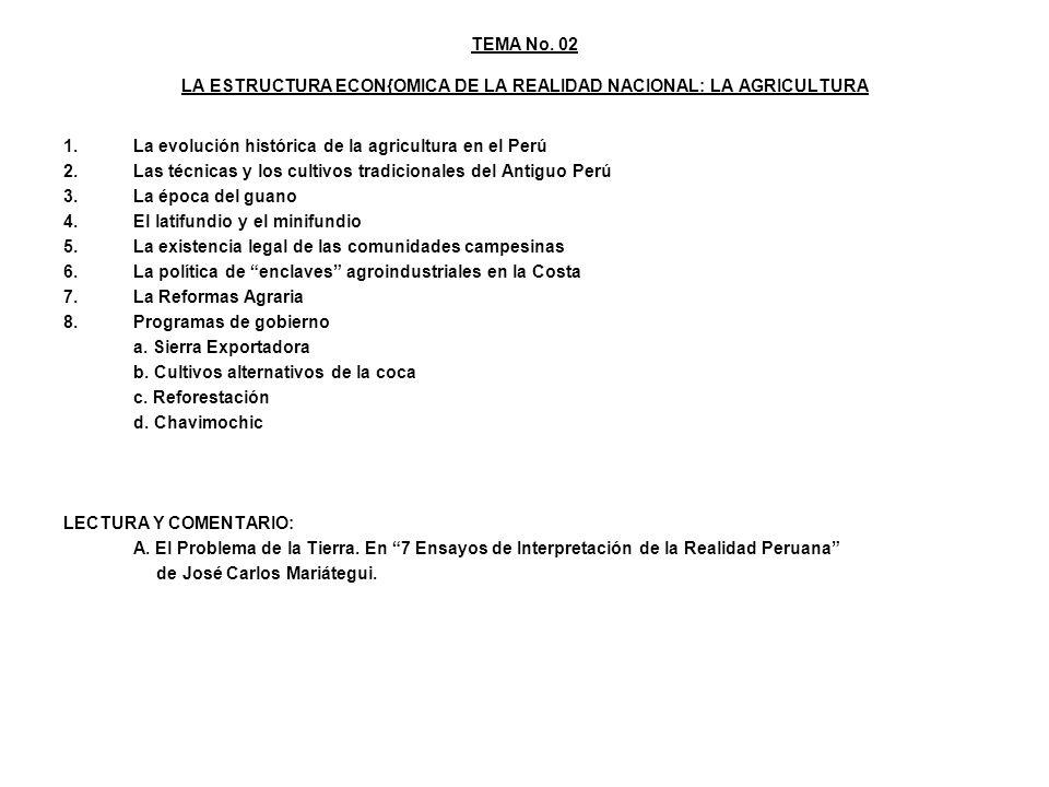 TEMA No. 02 LA ESTRUCTURA ECON{OMICA DE LA REALIDAD NACIONAL: LA AGRICULTURA 1.La evolución histórica de la agricultura en el Perú 2.Las técnicas y lo