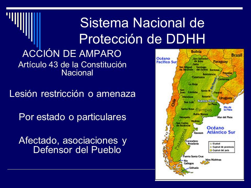 Sistema Nacional de Protección de DDHH ACCIÓN DE AMPARO Artículo 43 de la Constitución Nacional Lesión restricción o amenaza Por estado o particulares