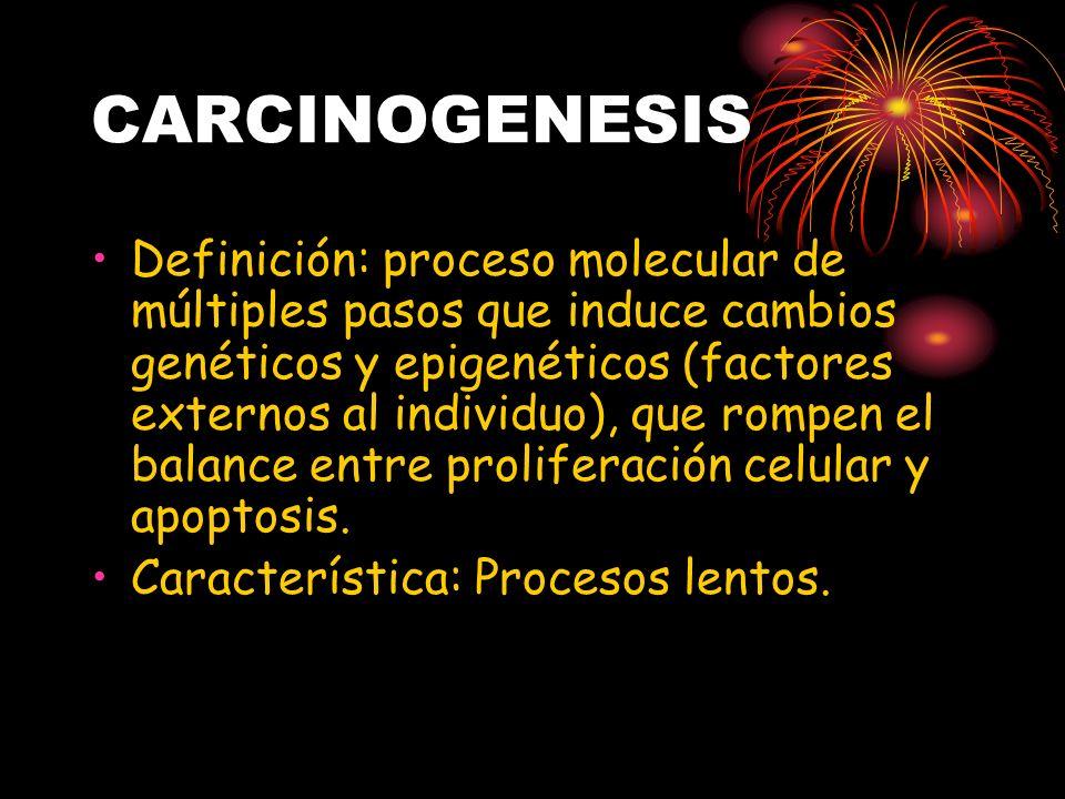 CARCINOGENESIS Definición: proceso molecular de múltiples pasos que induce cambios genéticos y epigenéticos (factores externos al individuo), que romp