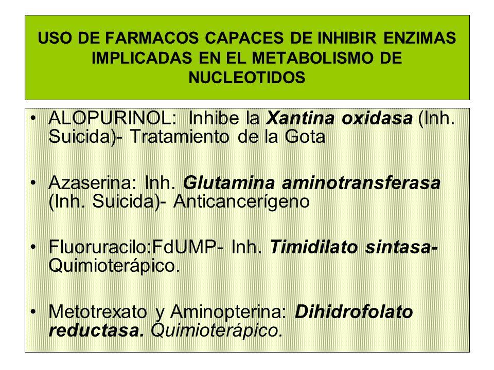 USO DE FARMACOS CAPACES DE INHIBIR ENZIMAS IMPLICADAS EN EL METABOLISMO DE NUCLEOTIDOS ALOPURINOL: Inhibe la Xantina oxidasa (Inh. Suicida)- Tratamien