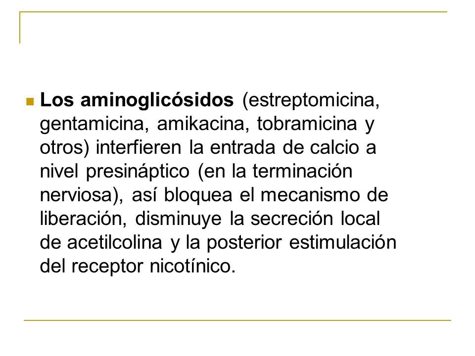 Los aminoglicósidos (estreptomicina, gentamicina, amikacina, tobramicina y otros) interfieren la entrada de calcio a nivel presináptico (en la termina