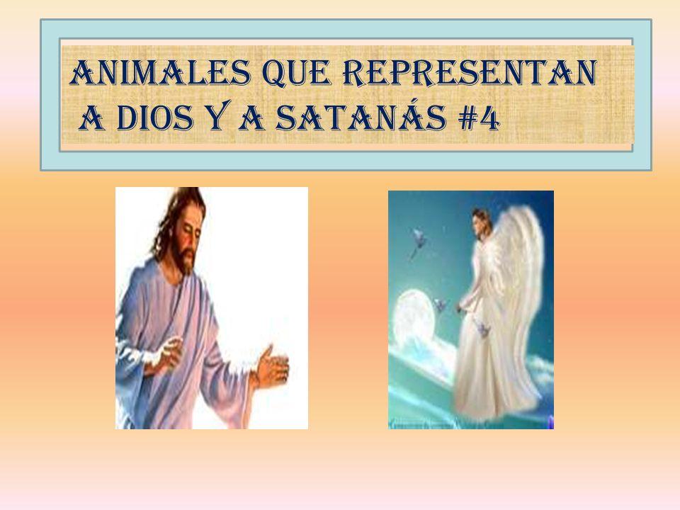 Animales que representan A Dios y a Satanás #4