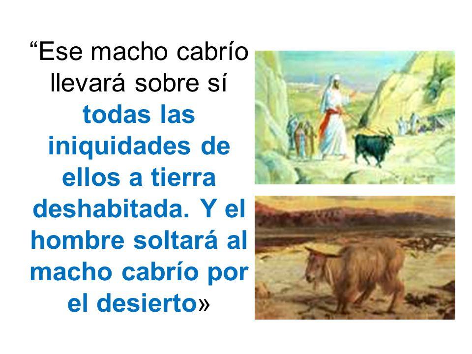 Ese macho cabrío llevará sobre sí todas las iniquidades de ellos a tierra deshabitada. Y el hombre soltará al macho cabrío por el desierto»