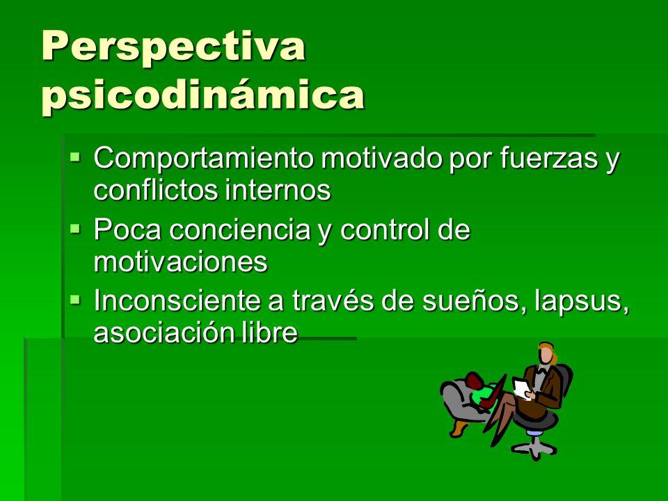 Perspectiva psicodinámica Comportamiento motivado por fuerzas y conflictos internos Comportamiento motivado por fuerzas y conflictos internos Poca con
