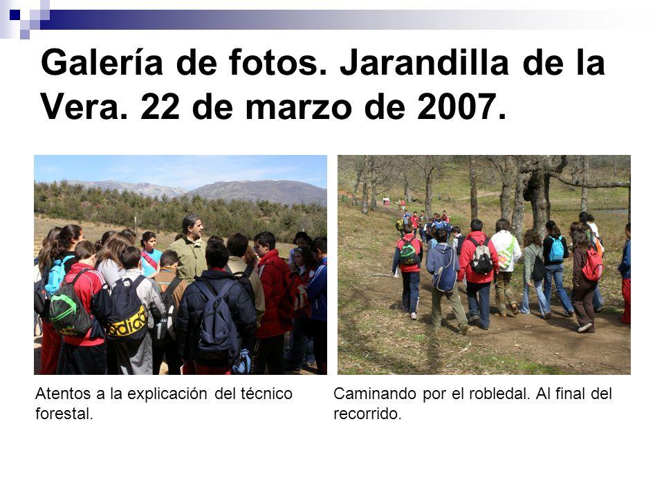 Galería de fotos. Jarandilla de la Vera. 22 de marzo de 2007. Atentos a la explicación del técnico forestal. Caminando por el robledal. Al final del r