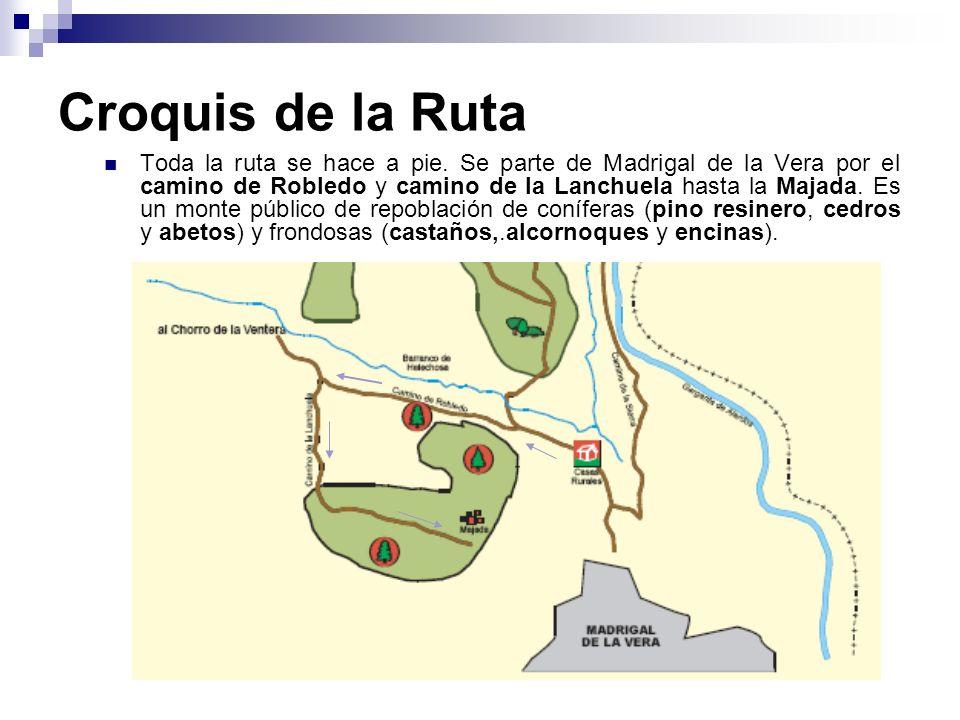 Croquis de la Ruta Toda la ruta se hace a pie. Se parte de Madrigal de la Vera por el camino de Robledo y camino de la Lanchuela hasta la Majada. Es u