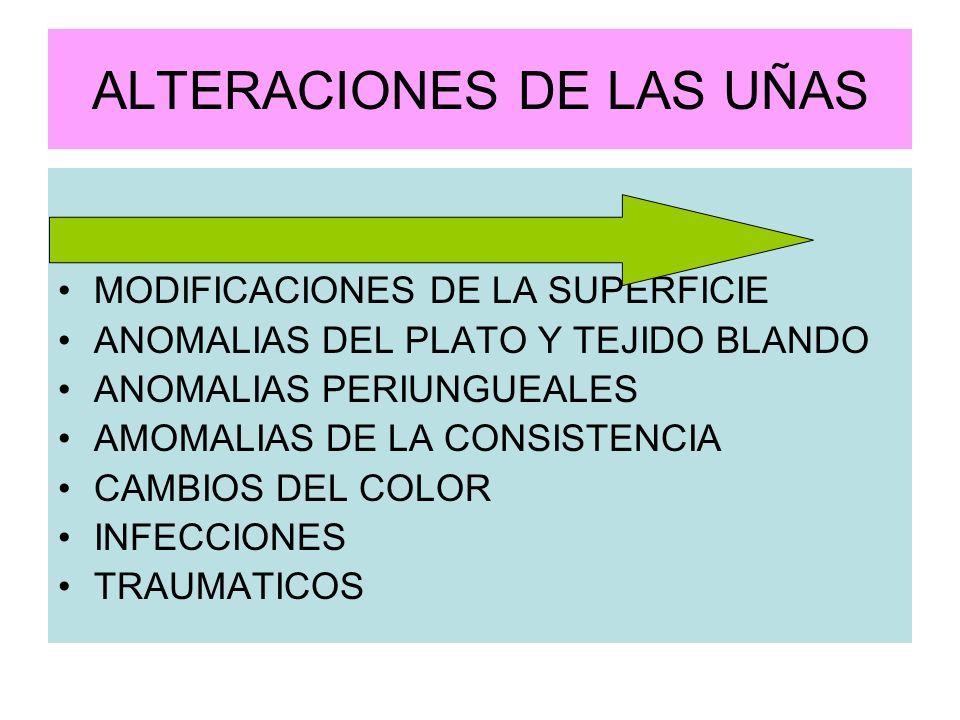ALTERACIONES DE LAS UÑAS ANOMALIAS DE LA CONFIGURACION MODIFICACIONES DE LA SUPERFICIE ANOMALIAS DEL PLATO Y TEJIDO BLANDO ANOMALIAS PERIUNGUEALES AMO