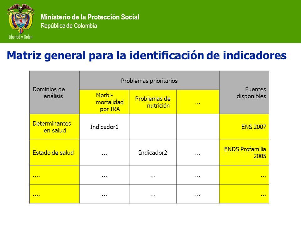 Ministerio de la Protección Social República de Colombia Matriz general para la identificación de indicadores Dominios de análisis Problemas prioritar