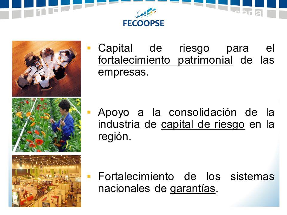 Capital de riesgo para el fortalecimiento patrimonial de las empresas. Apoyo a la consolidación de la industria de capital de riesgo en la región. For