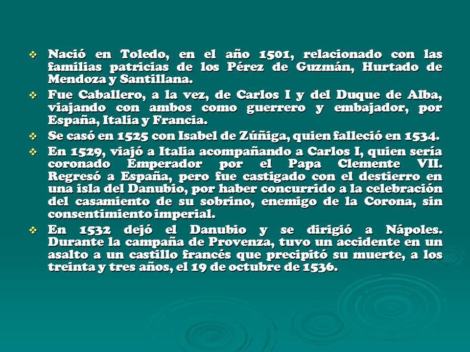 Nació en Toledo, en el año 1501, relacionado con las familias patricias de los Pérez de Guzmán, Hurtado de Mendoza y Santillana. Nació en Toledo, en e