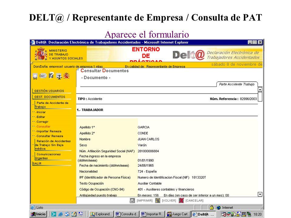 DELT@ / Representante de Empresa / Consulta de PAT Aparece el formulario