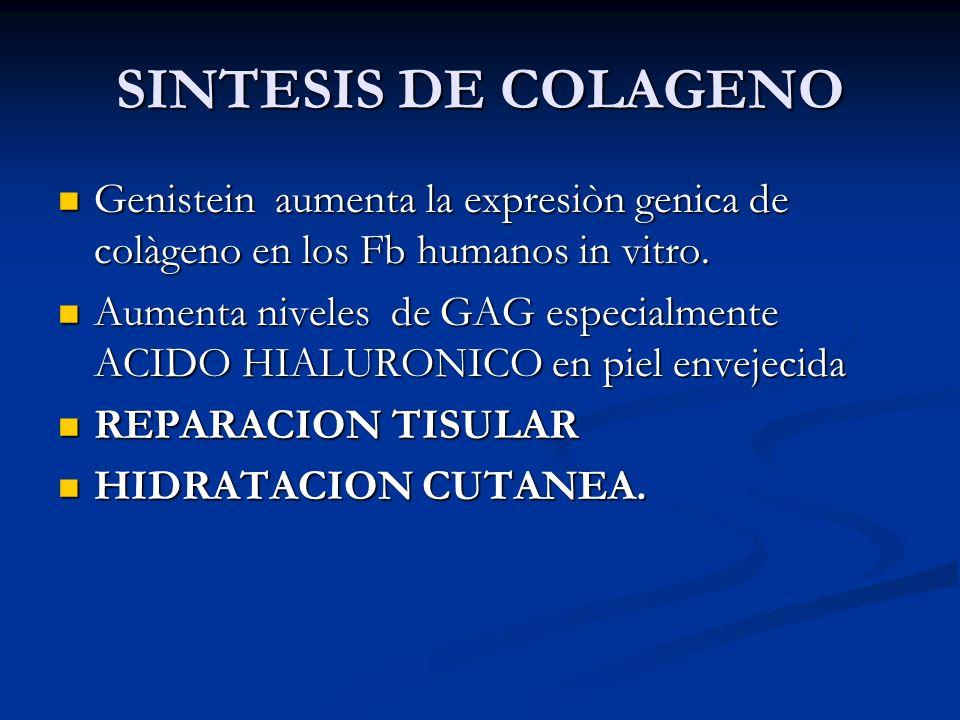 SINTESIS DE COLAGENO Genistein aumenta la expresiòn genica de colàgeno en los Fb humanos in vitro. Genistein aumenta la expresiòn genica de colàgeno e