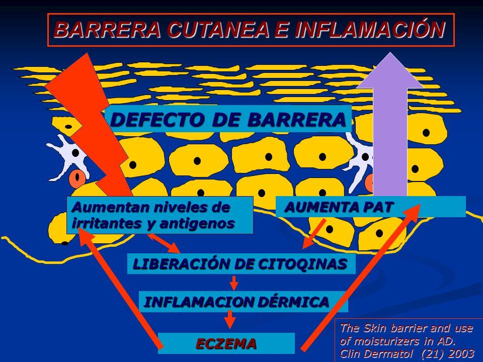 BARRERA CUTANEA E INFLAMACIÓN DEFECTO DE BARRERA Aumentan niveles de irritantes y antigenos Aumenta PAT AUMENTA PAT LIBERACIÓN DE CITOQINAS INFLAMACIO