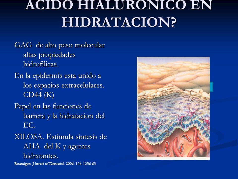 ACIDO HIALURONICO EN HIDRATACION? GAG de alto peso molecular altas propiedades hidrofilicas. En la epidermis esta unido a los espacios extracelulares.