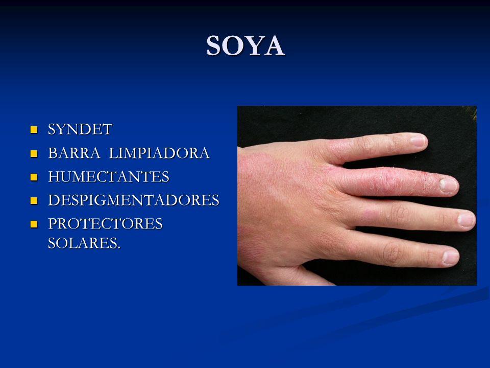 SOYA SYNDET BARRA LIMPIADORA HUMECTANTES DESPIGMENTADORES PROTECTORES SOLARES.