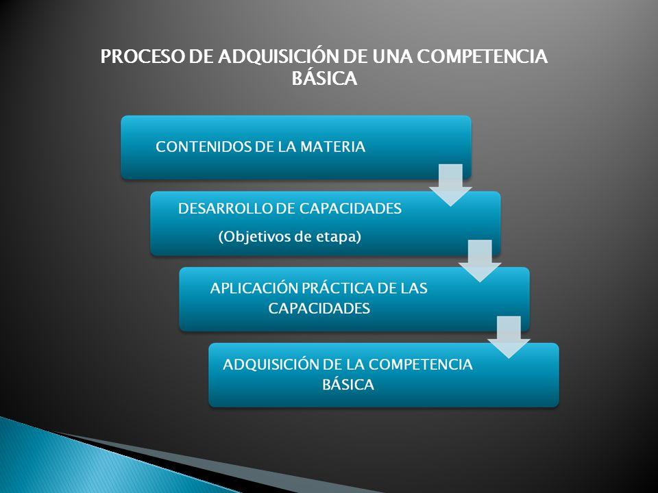 PROCESO DE ADQUISICIÓN DE UNA COMPETENCIA BÁSICA