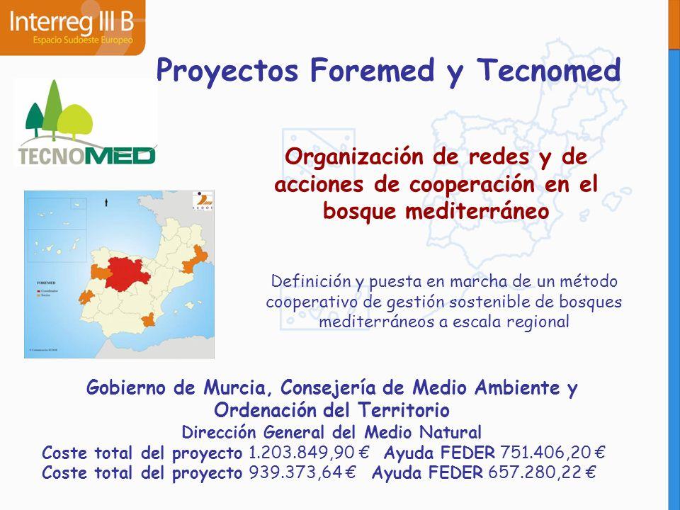 Proyectos Foremed y Tecnomed Organización de redes y de acciones de cooperación en el bosque mediterráneo Definición y puesta en marcha de un método c