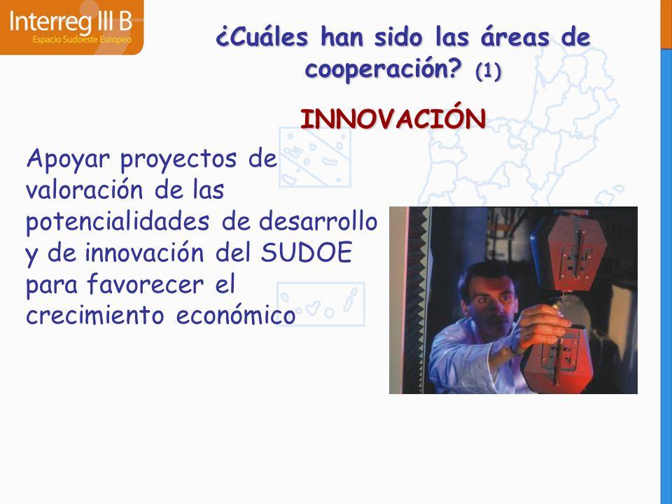 ¿Cuáles han sido las áreas de cooperación? (1) INNOVACIÓN Apoyar proyectos de valoración de las potencialidades de desarrollo y de innovación del SUDO