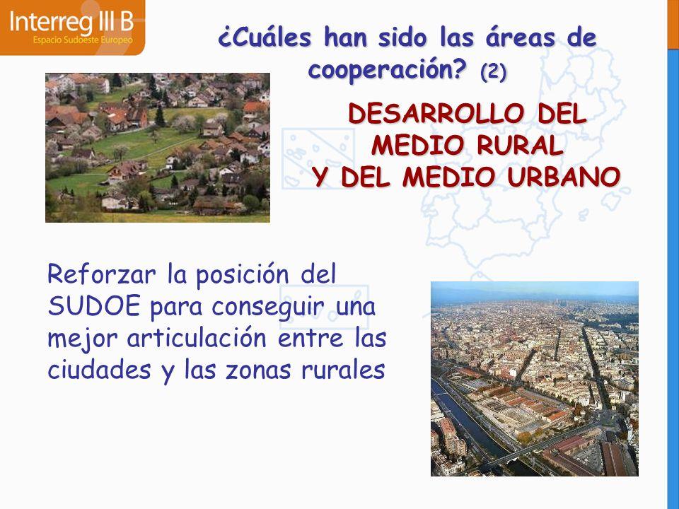DESARROLLO DEL MEDIO RURAL Y DEL MEDIO URBANO Reforzar la posición del SUDOE para conseguir una mejor articulación entre las ciudades y las zonas rura