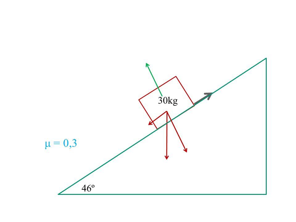 30kg μ = 0,3 46º