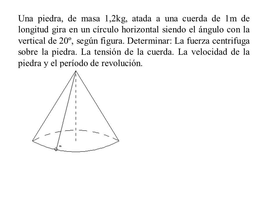 Una piedra, de masa 1,2kg, atada a una cuerda de 1m de longitud gira en un círculo horizontal siendo el ángulo con la vertical de 20º, según figura. D