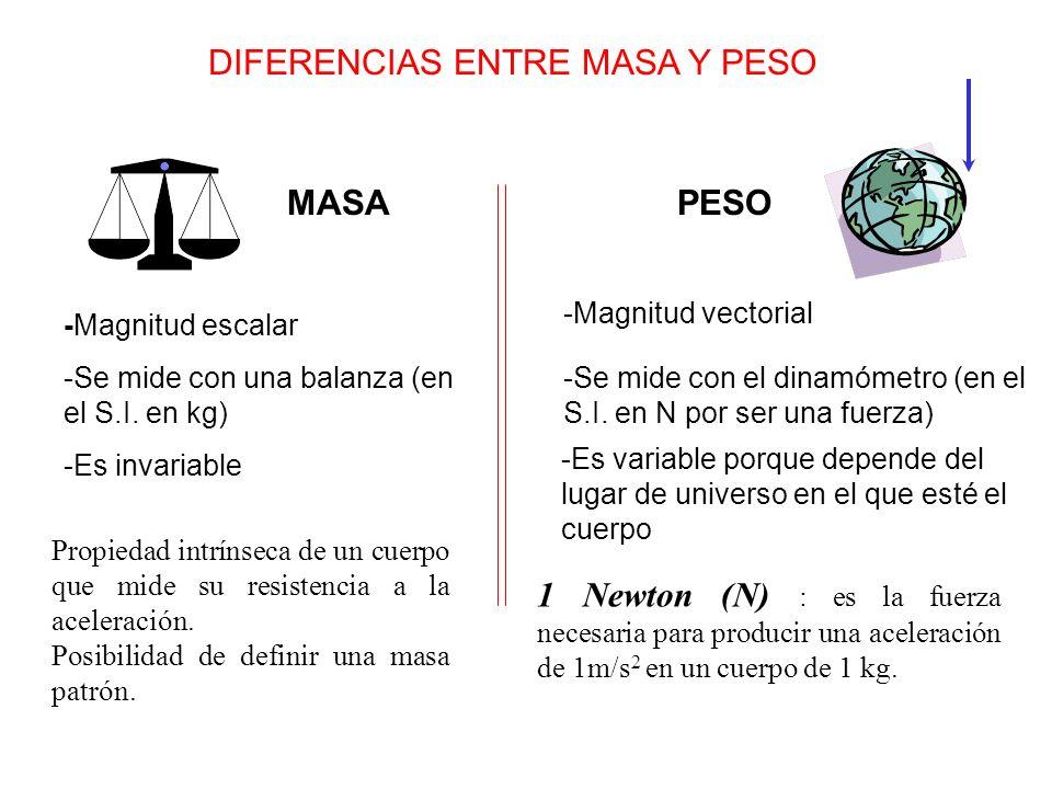 DIFERENCIAS ENTRE MASA Y PESO MASAPESO -Magnitud vectorial -Magnitud escalar -Se mide con una balanza (en el S.I. en kg) -Es invariable -Se mide con e