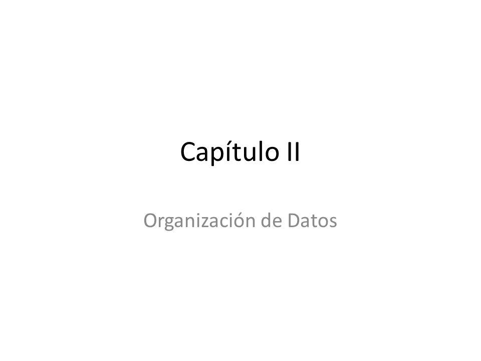 Capítulo II Organización de Datos