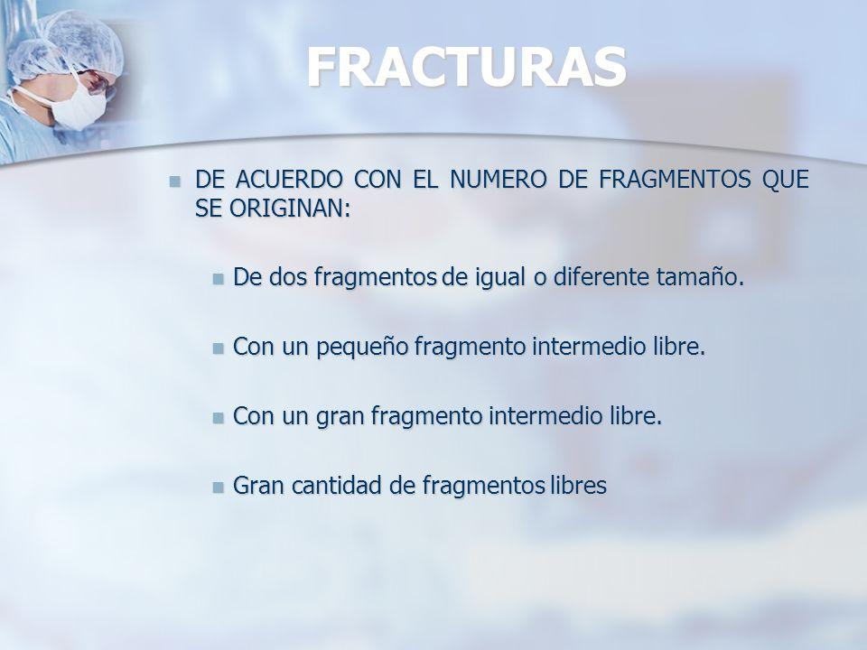 FRACTURAS DE ACUERDO CON EL TRAZO FRACTURARIO: DE ACUERDO CON EL TRAZO FRACTURARIO: Longitudinales: A lo largo del hueso.