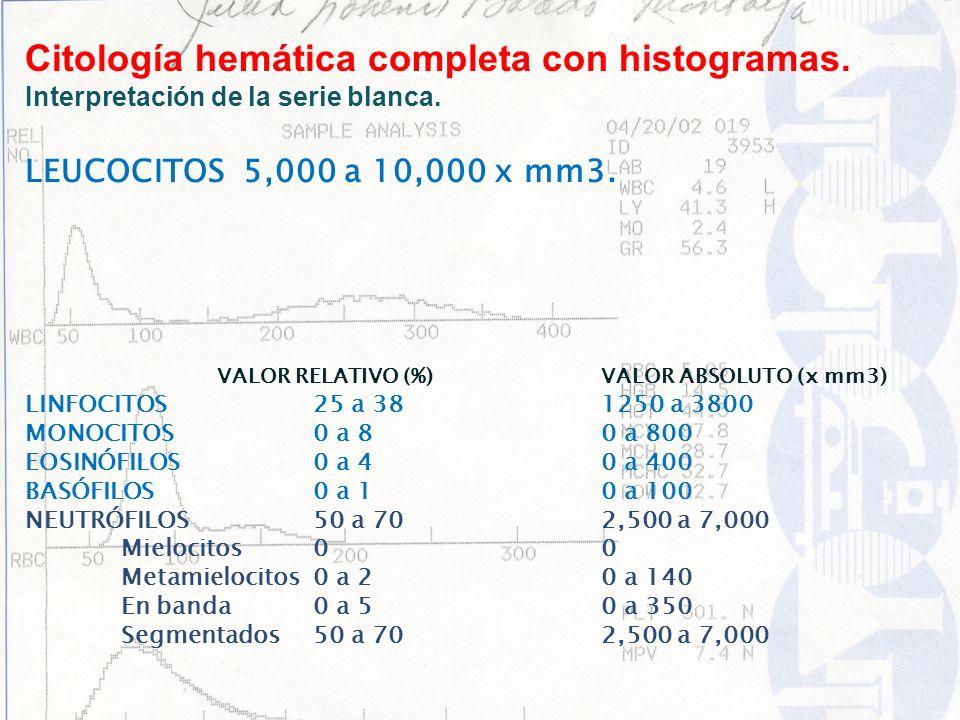 LEUCOCITOS 5,000 a 10,000 x mm3. VALOR RELATIVO (%)VALOR ABSOLUTO (x mm3) LINFOCITOS25 a 381250 a 3800 MONOCITOS0 a 80 a 800 EOSINÓFILOS0 a 40 a 400 B