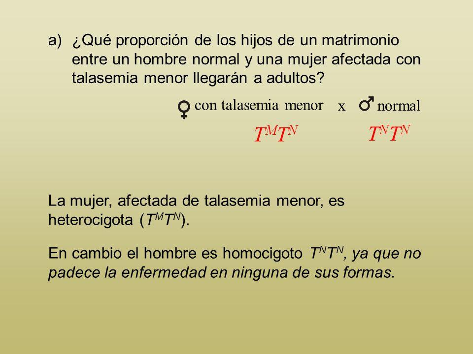 Problema 3 La talasemia es un tipo de anemia que se da en el hombre. Presenta dos formas, denominadas menor y mayor. Los individuos gravemente afectad