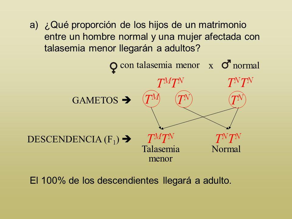 a)¿Qué proporción de los hijos de un matrimonio entre un hombre normal y una mujer afectada con talasemia menor llegarán a adultos? La mujer, afectada