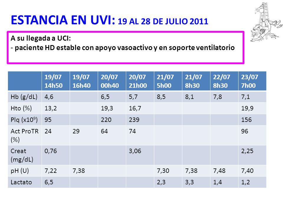 ESTANCIA EN UVI: 19 AL 28 DE JULIO 2011 A su llegada a UCI: - paciente HD estable con apoyo vasoactivo y en soporte ventilatorio 19/07 14h50 19/07 16h