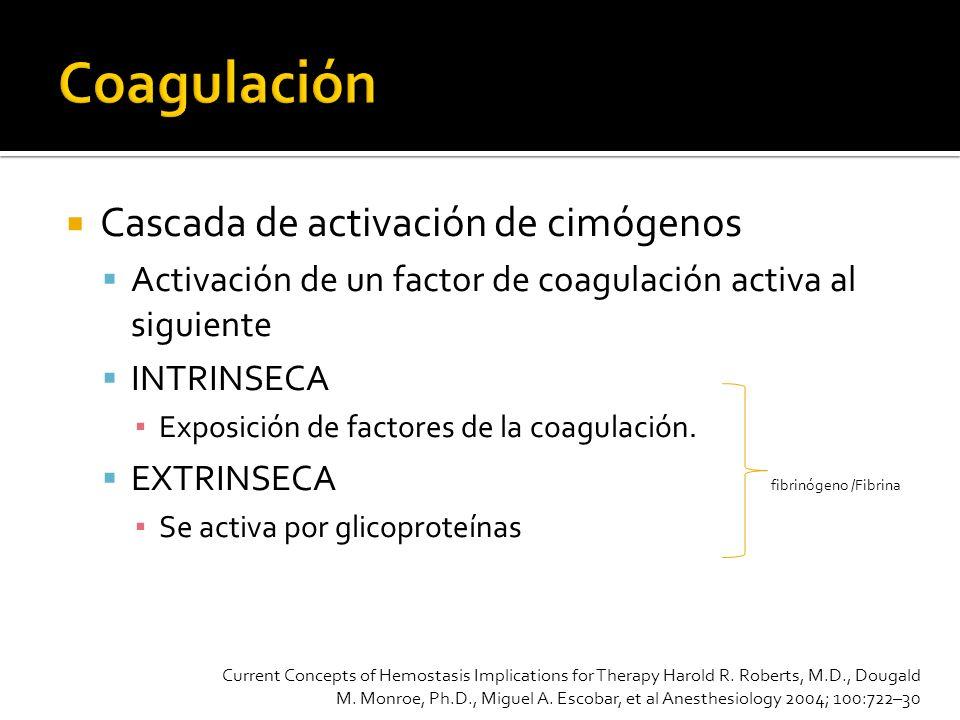 Cascada de activación de cimógenos Activación de un factor de coagulación activa al siguiente INTRINSECA Exposición de factores de la coagulación. EXT