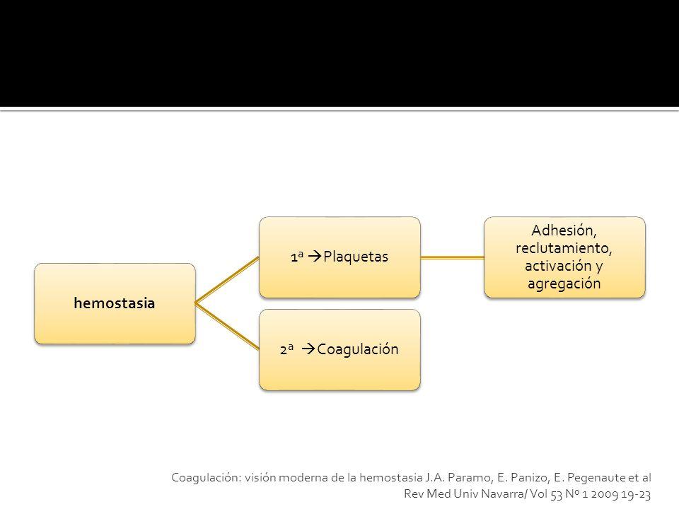 hemostasia 1ª Plaquetas Adhesión, reclutamiento, activación y agregación 2ª Coagulación Coagulación: visión moderna de la hemostasia J.A. Paramo, E. P