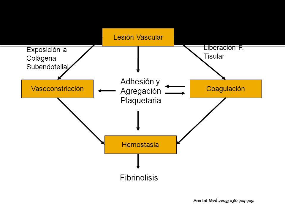 Reflejo Axonómico Endotelina Agregación Plaquetaria Ac.
