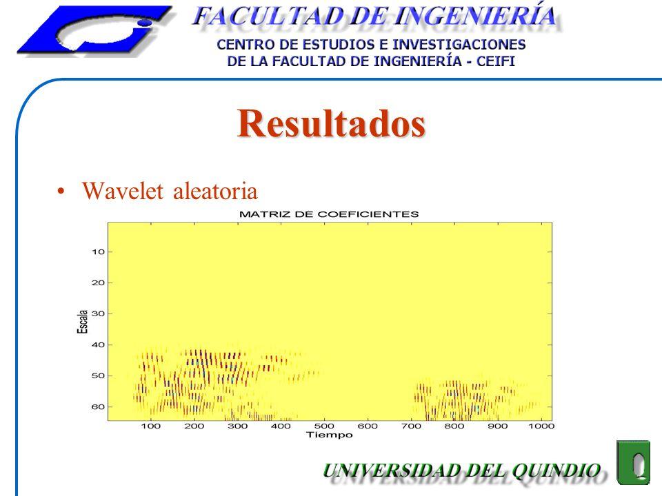 Resultados Wavelet aleatoria