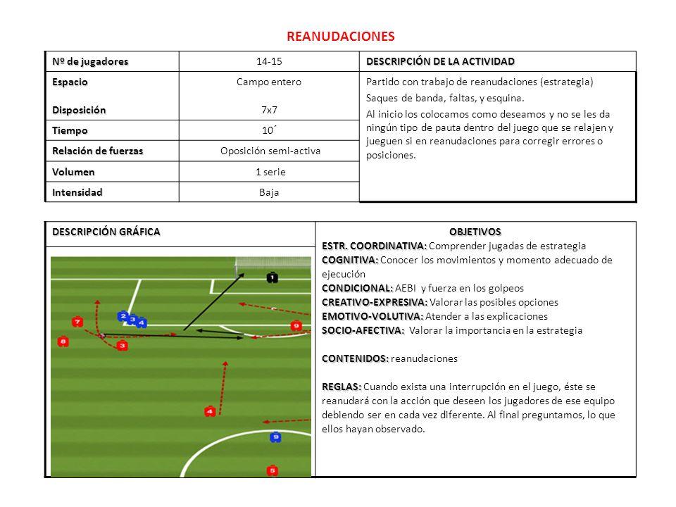 REANUDACIONES Nº de jugadores 14-15 DESCRIPCIÓN DE LA ACTIVIDAD EspacioDisposición Campo entero 7x7 Partido con trabajo de reanudaciones (estrategia)