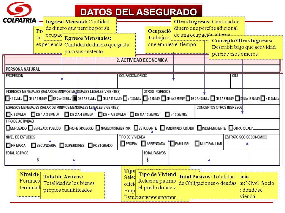 SUBGERENCIA DE CAPACITACION COMERCIAL DATOS DEL ASEGURADO Profesión: Actividad para la cual se preparó o posee experiencia. Ocupación/Oficio: Trabajo