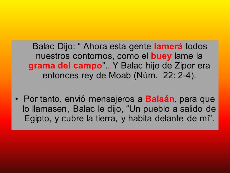 Balac Dijo: Ahora esta gente lamerá todos nuestros contornos, como el buey lame la grama del campo.. Y Balac hijo de Zipor era entonces rey de Moab (N