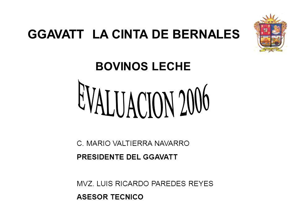 GGAVATT LA CINTA DE BERNALES BOVINOS LECHE C. MARIO VALTIERRA NAVARRO PRESIDENTE DEL GGAVATT MVZ. LUIS RICARDO PAREDES REYES ASESOR TECNICO